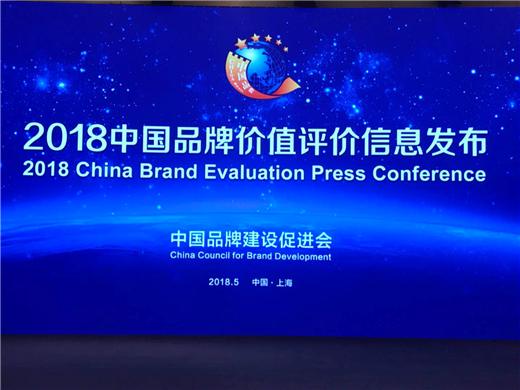 第二届中国品牌发展论坛 暨2018中国品牌百强榜发布会
