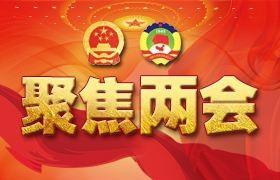 雷军、董明珠、刘强东…企业家们在两会上说了啥