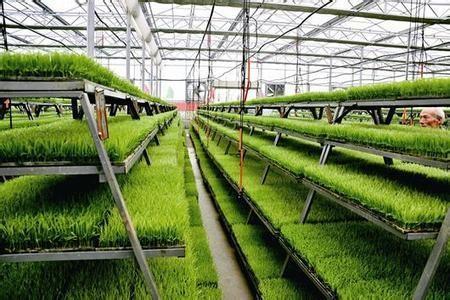 《国际农业信用担保发展的基本经验》